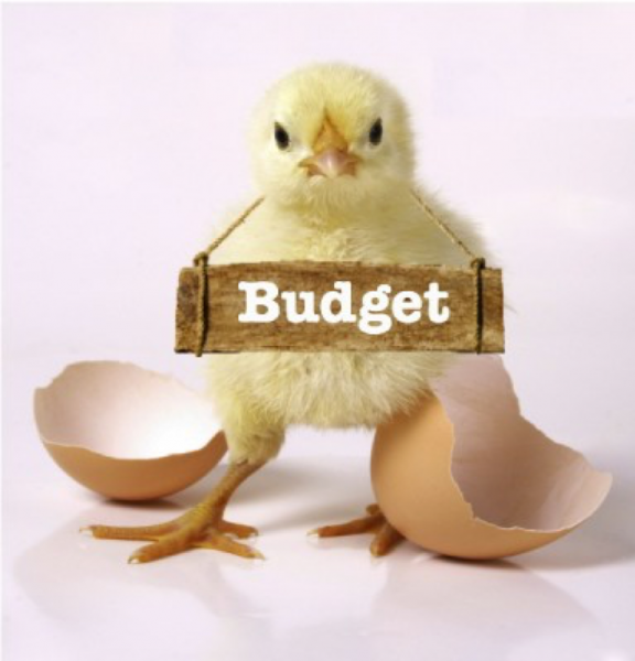 Baby chick that just hatched with a budget sign over its neck