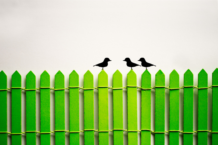 black birds perching on a green fence