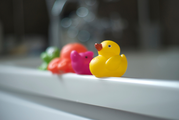 Several tub animals hanging out on the edge of the tub with focus on the rubber ducky.